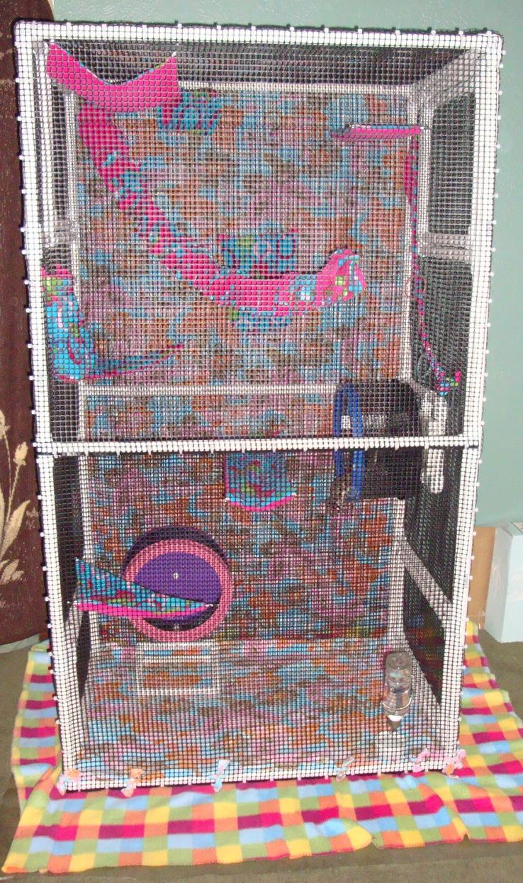 Glidergossip New Cage Building Process