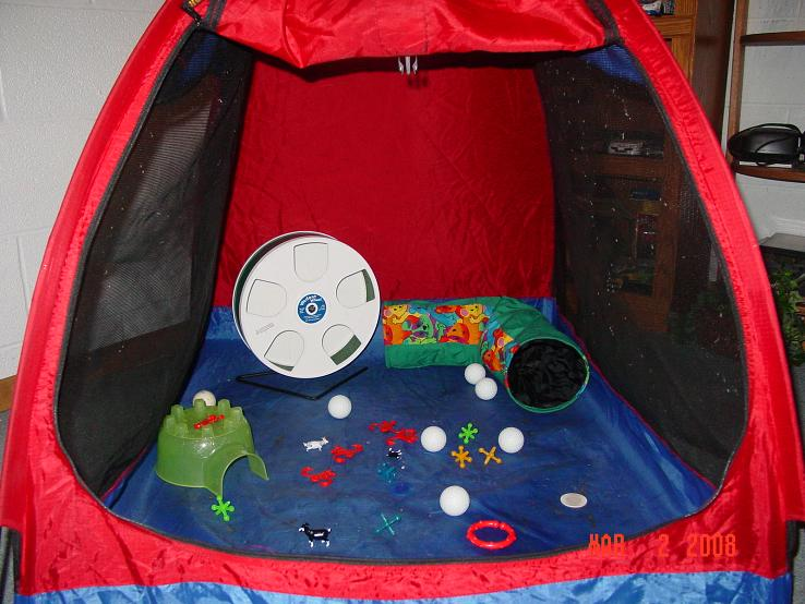 But until I get a bigger u0026 better one...they still have fun in this one! & GliderGossip - Tent Pictures?