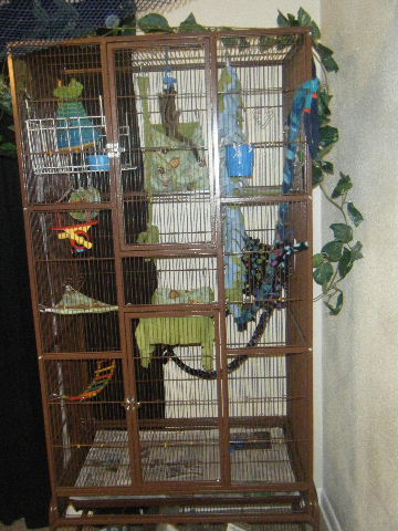 How to Build a Bird Cage - Donna Sundblad on HubPages