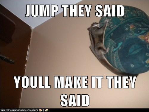 they said glidergossip caption fun 7 glider meme edition