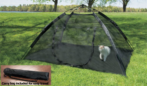 ... greatest sugar glider play tent ever. Mesh fabric on all walls and floor free standing quick assemble and collapse and super portable. & GliderGossip - Greatest sugar glider tent ever